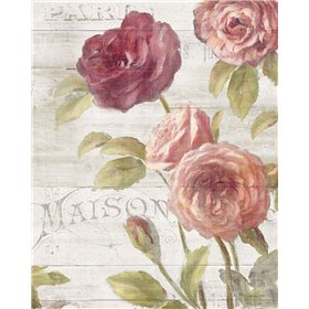 French Roses III