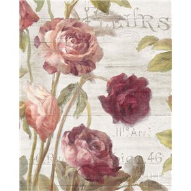 French Roses II