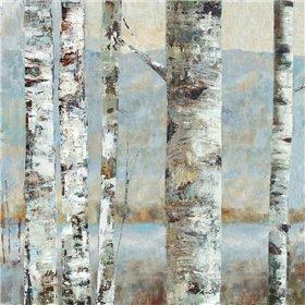 Winter Birch II