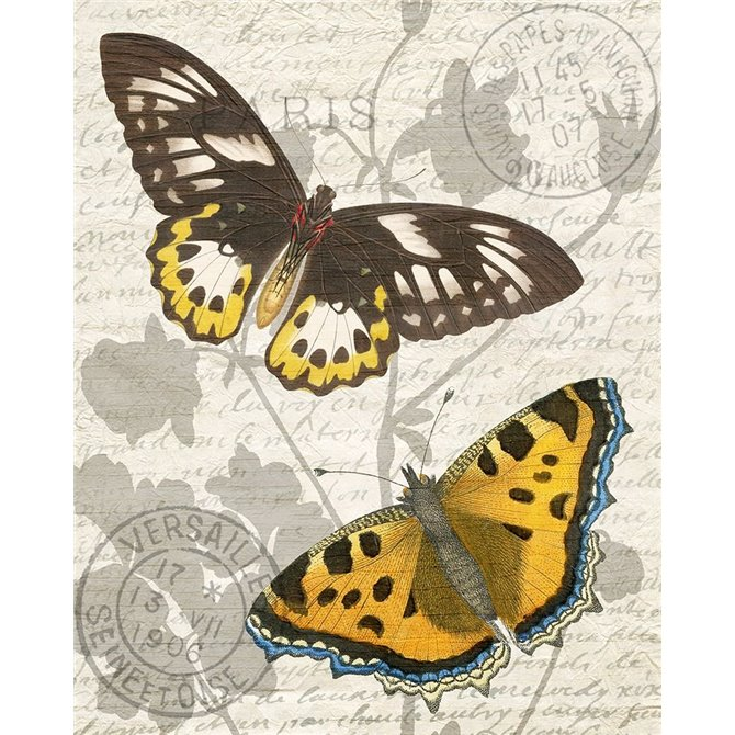 Butterfly Travel 1