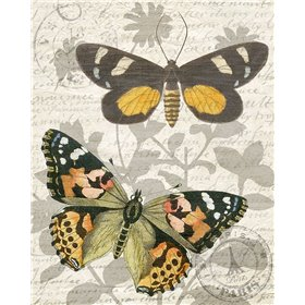 Butterfly Travel 2