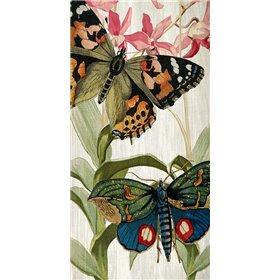 Butterfly World 1