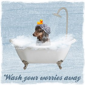 Worry Wash