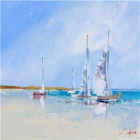 Aspendale Sails