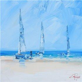 Aspendale Sails 2