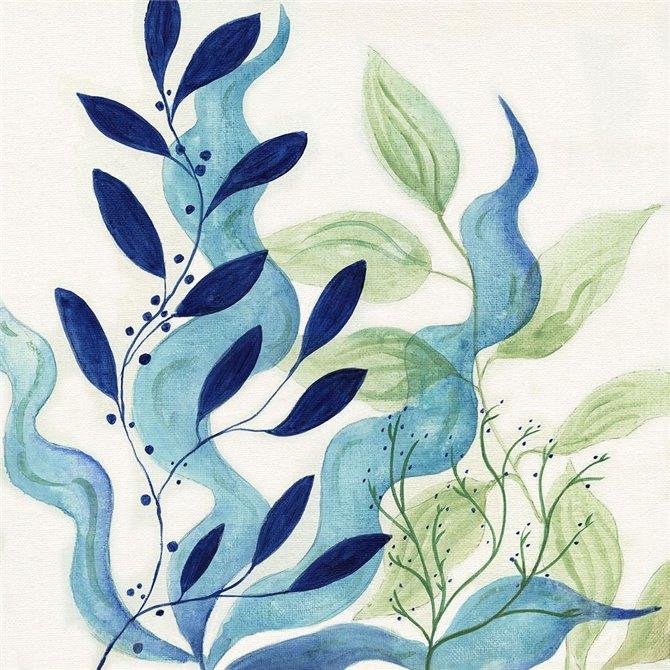 Blue Coral I