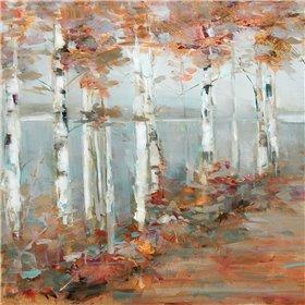 Birch Walk I