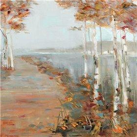 Birch Walk II