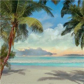 A Found Paradise I