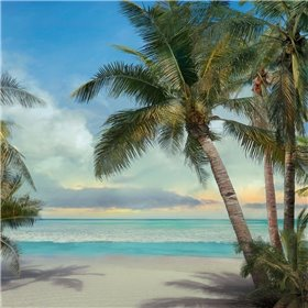 A Found Paradise II