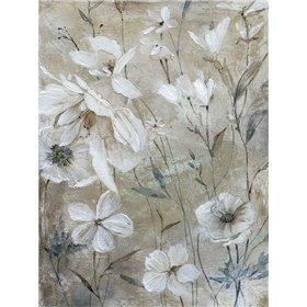 Wildflower Whites