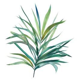 Palm Frond III