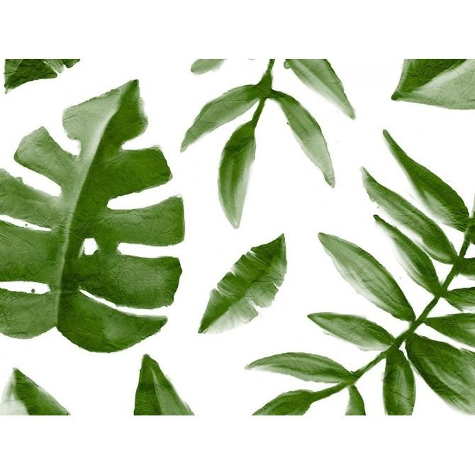 Tropic Green 1