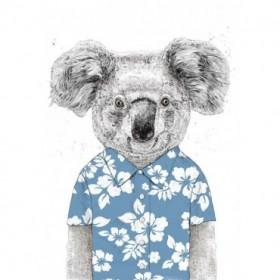 Summer Koala (Blue)