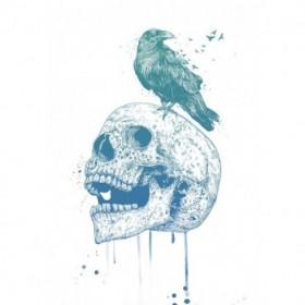 New Skull (Blue)