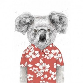 Summer Koala (Red)