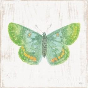 White Barn Butterflies II