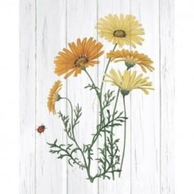 Botanical Bouquet on Wood I