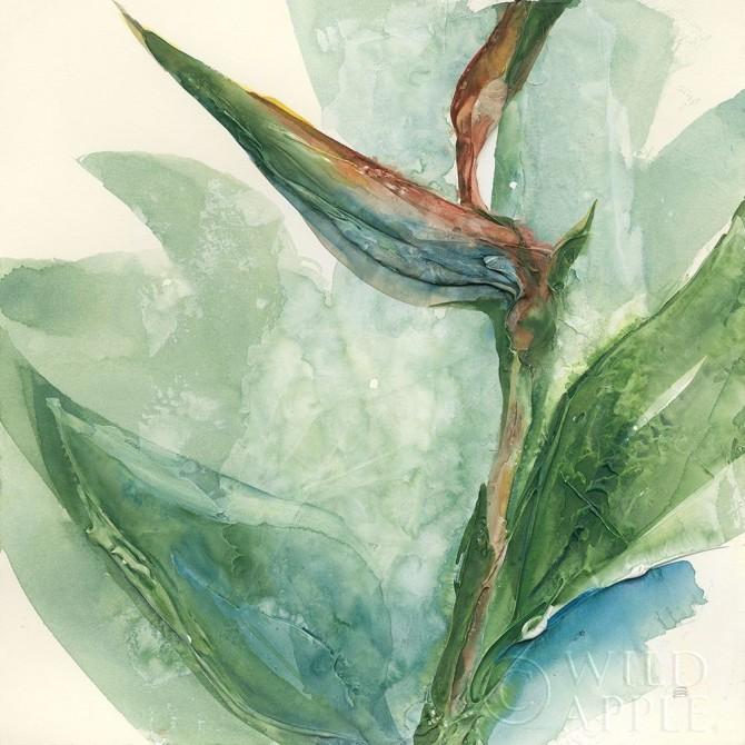 Exotic Flower III