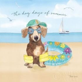 Summer Paws III