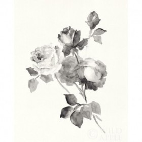 Rose Blossoms Gray