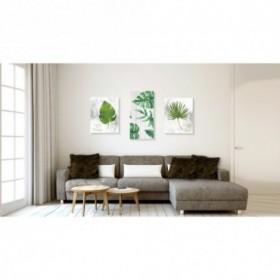 Conjunto de 3 cuadros de hojas y plantas