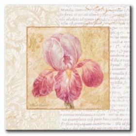 GLA-487_Le Jardin II / Cuadro Flores, Flor sobre fondo Vintage con Letras