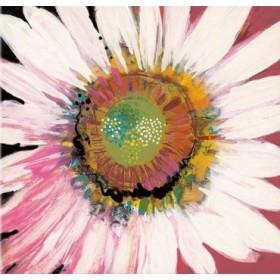 BLP250 / Cuadro Sunshine Flower I