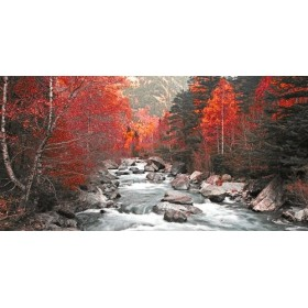 JAP831 Cuadro Rio y árboles rojos