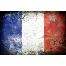 JHR-Cuadro bandera - Francia 1