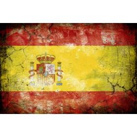 JHR-Cuadro bandera - España 1