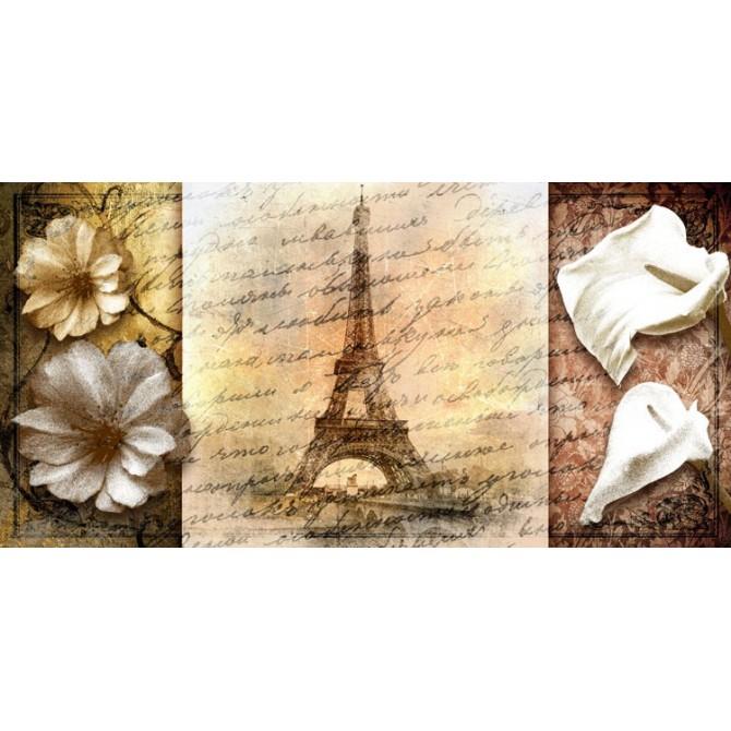 GR-Cuadro Vintage Paris