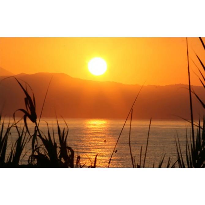 25582882_XS / Cuadro Puesta de sol en el lago