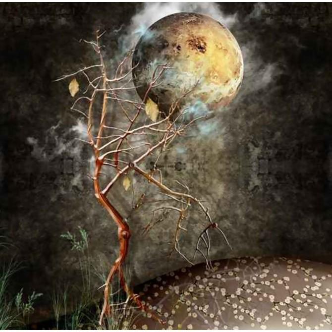 41211285 / Cuadro Noche con árbol