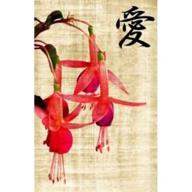 20078781 / Cuadro Preciosas flores rosas en un viejo papiro