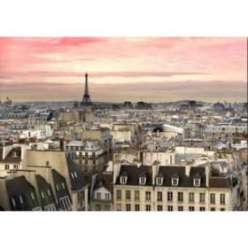 28290547 / Cuadro París atardecer