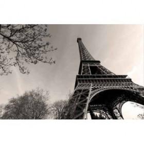 12799102 / Cuadro Torre Eiffel