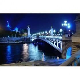 3747842 / Cuadro Puente parisino iluminado