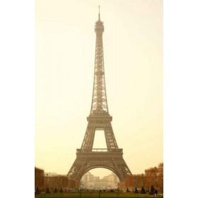 31201437 / Cuadro Torre Eiffel