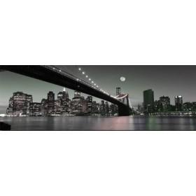 23351310_X / Cuadro New York Noche Luna