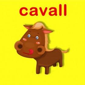 23159353 / Cuadro Cavall