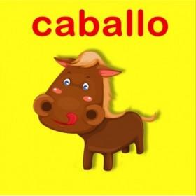 23159353 / Cuadro Caballo