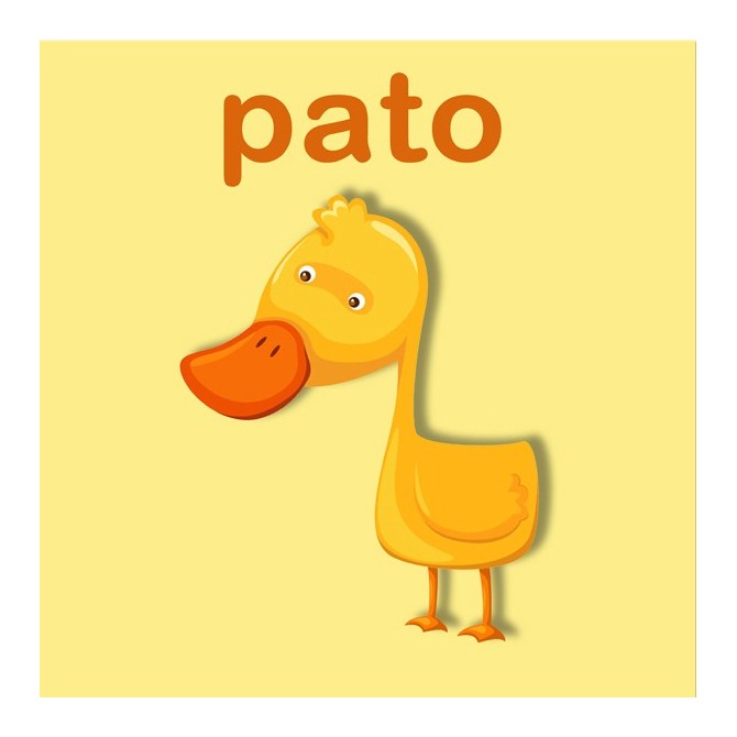 23159353 / Cuadro Pato