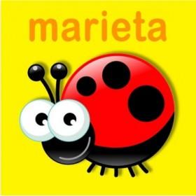 23159353 / Cuadro Marieta