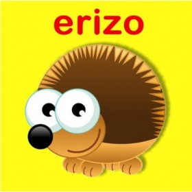 23159353 / Cuadro Erizo