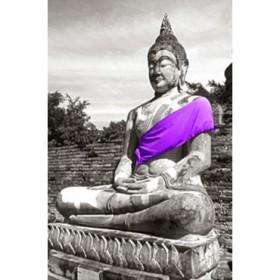 217284-LG / Cuadro Buda Túnica Lila