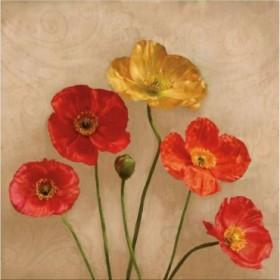 PLP 131 / Cuadro Graceful Spring II
