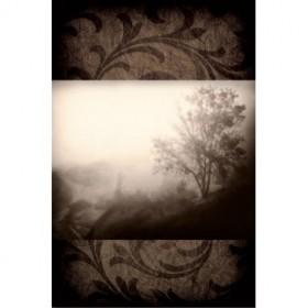 PLP 129 / Cuadro Early Morning Fog