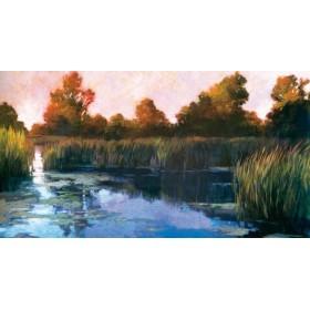 8598 / Cuadro The Lily Pond