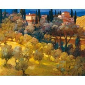8228 / Cuadro Florentine Landscape